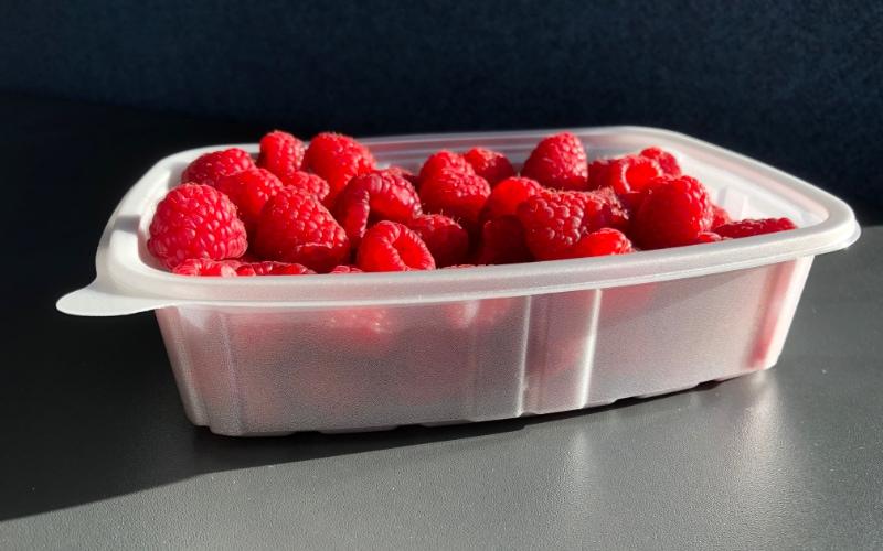 PLA foam tray raspberrys