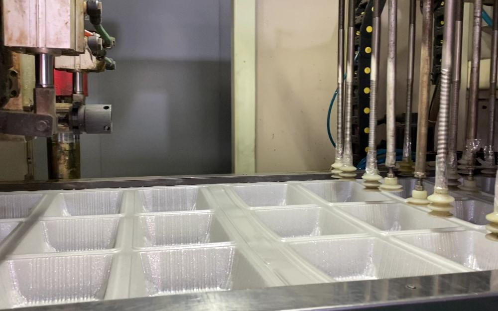 PET Micro-foam Sheet to Fruit Tray